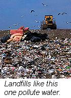 Trash from landfills like this seep into groundwater polluting our drinking water
