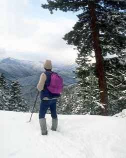 hiker on snowy mountain